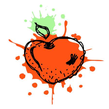 Vector hand drawn  fruits illustration of strawberry with splash and drop, isolated on the white background. Line drawing, Series of Artistic, Ornamental vector Illustration. Illustration