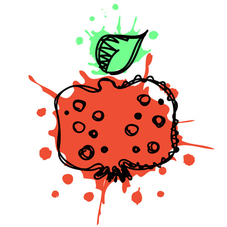 Vector hand drawn fruits illustration of pomegranate with splash and drop, isolated on the white background. Line drawing, Series of Artistic, Ornamental vector Illustration.