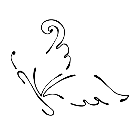 Vector black and white  illustration of insect. Butterfly isolated on the white background. Hand drawn contour lines and strokes. Decorative  , icon, sign. Graphic vector illustration.