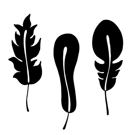 Vector hand drawn illustration, decorative ornamental stylized feather. Black and white graphic illustration isolated on the white background. Hand drawing silhouette. Illustration