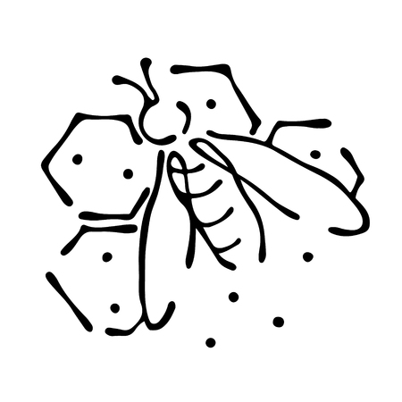 Vector illustration of insect Bee with honeycombs isolated on the white background Hand drawn contour lines and strokes Doodle style, graphic vector illustration