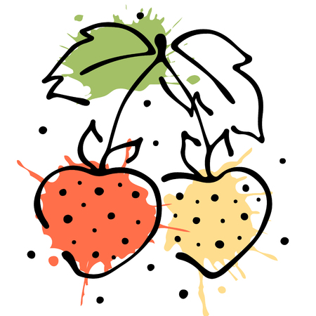 Vector fruits illustration. Strawberry with leaves, decorative elements isolated on the white background. Hand drawn contour lines and strokes. Doodle style, graphic vector illustration