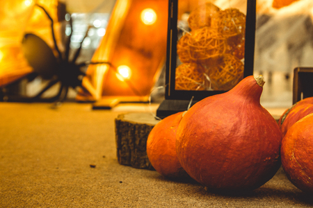 Halloween decorations. Pumpkins with a cocroach Stock Photo