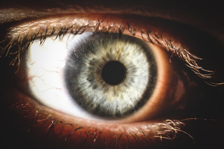 An enlarged image of eye with a gray iris, eyelashes and sclera. the shot is made by a slit lamp with a built-in camera Stock Photo