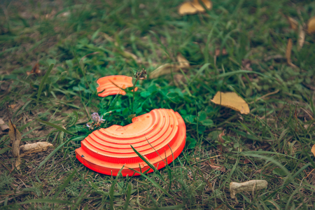 piatto volante arancione rotto sdraiato sull'erba Archivio Fotografico