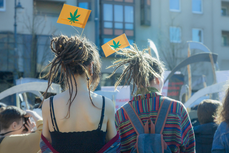 Two young people - a boy and a girl with dreadlocks support the law on the legalization of marijuana. Protest and conflict. Flags with symbol of weed. Фото со стока