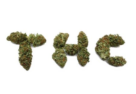plant drug: Marijuana ( cannabis ) bud arranged to spell THC Stock Photo