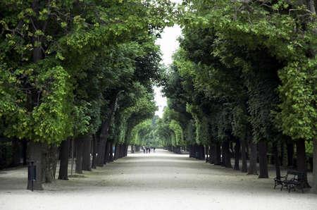 IMperial Gardens at Viennas Schloss schonbrunn Stock Photo