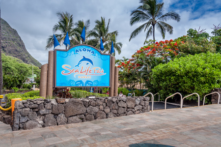 windward: Views of the Sea Life Park on June 26, 2013 on the windward side of Oahu  The Sea Life Park is a popular aquarium destination where kids swim with dolphins