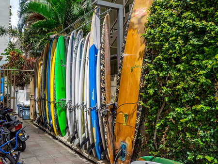 rentals: Surfboard rentals waiting for tourists in Waikiki on April 24, 2014 in Oahu  Waikiki beach is beachfront neighborhood of Honolulu, best known for white sand and surfing