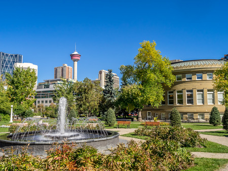 Memorial Park in Calgary, Alberta Canada during the beautiful fall season.