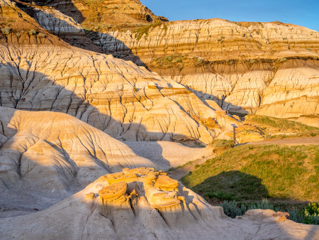badland: Badlands bathed in the warm light of a summer sunset near drumheller in Alberta Canada.