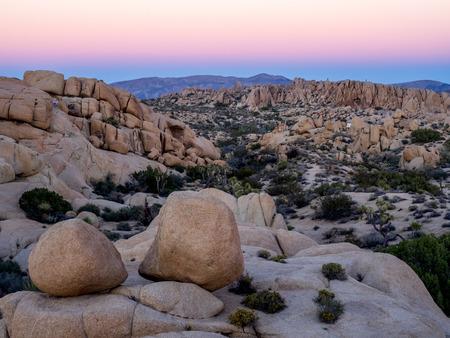 jumbo: Jumbo Rocks in Joshua Tree National Park, California, USA, where the Mojave and Colorado desert ecosystems meet.A Stock Photo