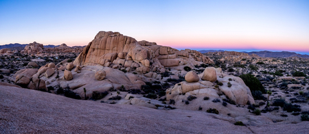 jumbo: Jumbo Rocks at sunset in Joshua Tree National Park, California, USA. Stock Photo