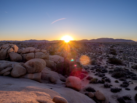 Desert landscape as sunset in Joshua Tree National Park, California, USA, where the Mojave and Colorado desert ecosystems meet.