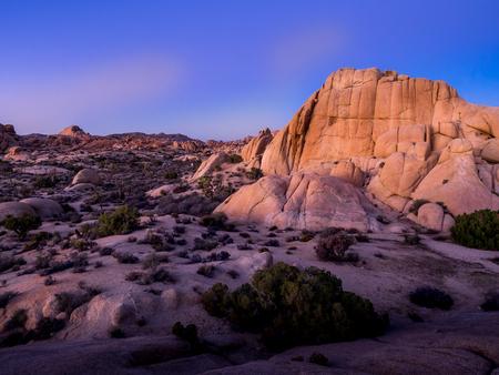 joshua: Jumbo Rocks in Joshua Tree National Park, California, USA, where the Mojave and Colorado desert ecosystems meet.