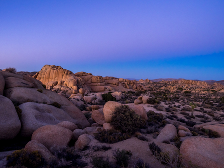 Jumbo Rocks in Joshua Tree National Park, California, USA, where the Mojave and Colorado desert ecosystems meet.