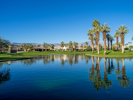 golf of california: Palms reflecting in water on a golf course in Palm Desert California.