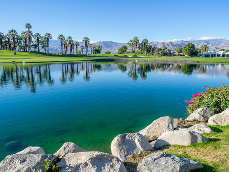 palm desert: Palms reflecting in water on a golf course in Palm Desert California.