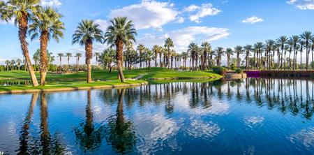 パーム デザート カリフォルニアのゴルフコースの水に反映してヤシの木.