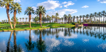 Palms reflecting in water on a golf course in Palm Desert California.