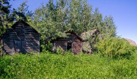 saskatchewan: Old farm sheds on the prairies in Saskatchewan on a summer day.