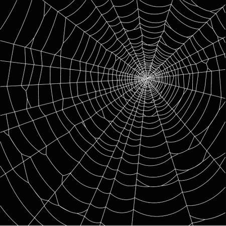 frightening: pretty scary frightening spider web for halloween Illustration