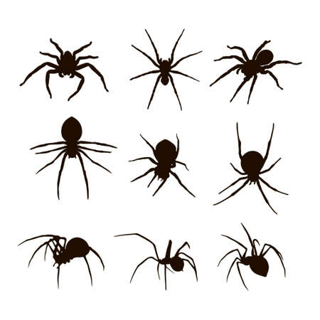 silhouettes: Spider silhouettes