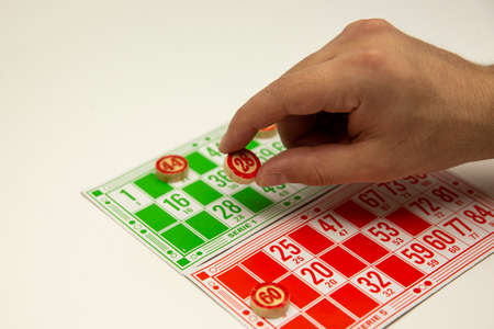The game of the board game lotto on a white background