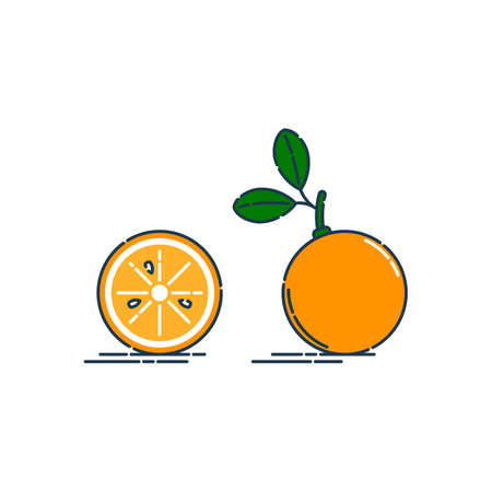 Whole and cut in half orange or tangerine fruit isolated on white background. Organic product. Bright summer harvest illustration. Flat style illustration for any design. Fresh cut citrus icon. Vettoriali