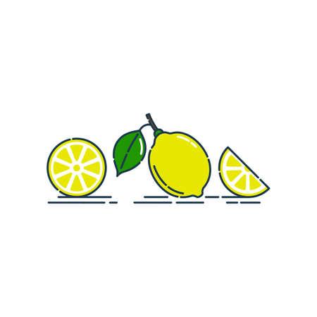 Whole, cut and slice in half lemon fruit isolated on white background. Organic product. Bright summer harvest illustration. Flat style illustration for any design. Fresh cut citrus icon.