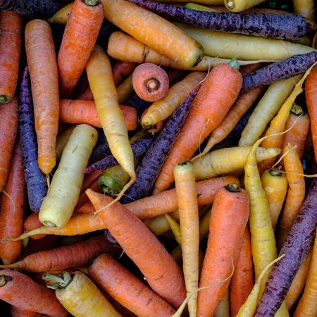 Orange, Yellow and Purple Carrots. Organic Food. Organic Vegetables. Natural Food. Natural Vegetables. Stock Photo