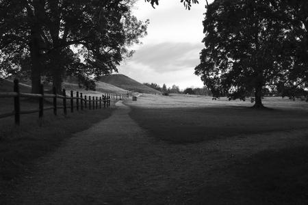 Summer landscape in black and white. Uppsala högar, Sweden