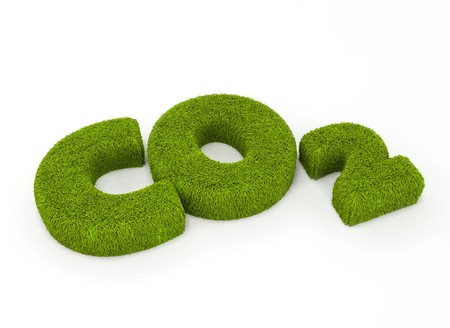Grass letters forming CO2