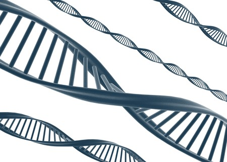 Dna illustration isolated on white  illustration