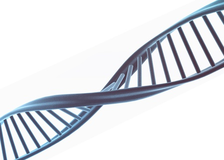 Dna illustration isolated on white  Stock Illustration - 8248953