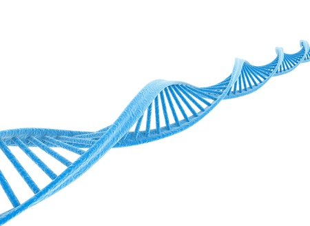 Dna spiral isolated on white  photo