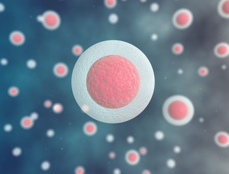 cytokinesis: multible cells  Science background  Stock Photo