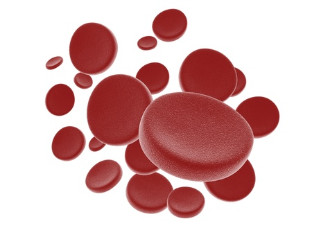 Blood cells isolated on white background  photo