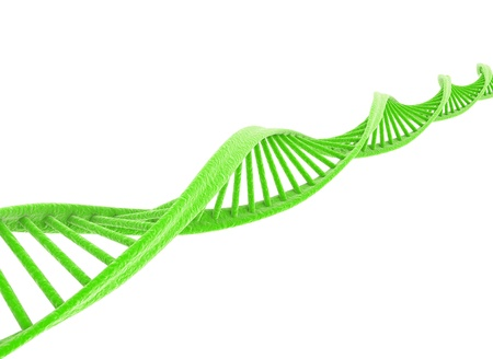 Green dna model isolated on white background  photo