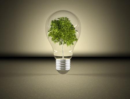 sustentabilidad: Bombilla de energía verde