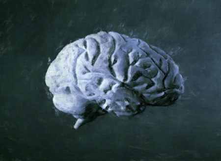 mentality: Human brain 3d painting Stock Photo