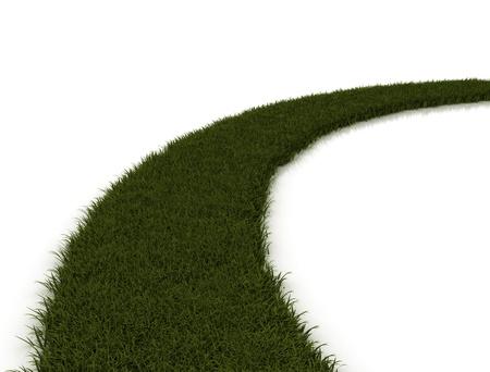 Green grass road