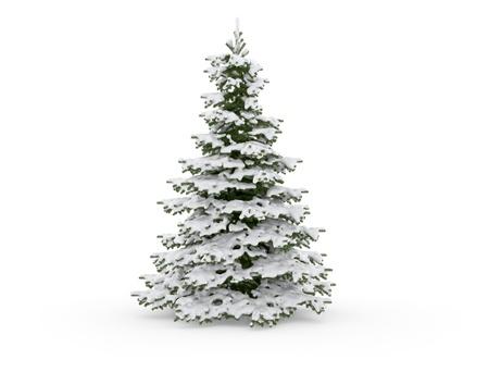 neige noel: arbre de No�l sur un fond blanc
