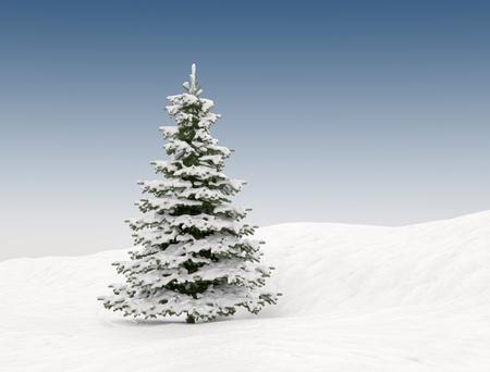 spar: Pine boom met sneeuw - kerstmis achtergrond Stockfoto