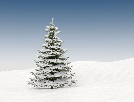 Pine tree with snow - christmas background