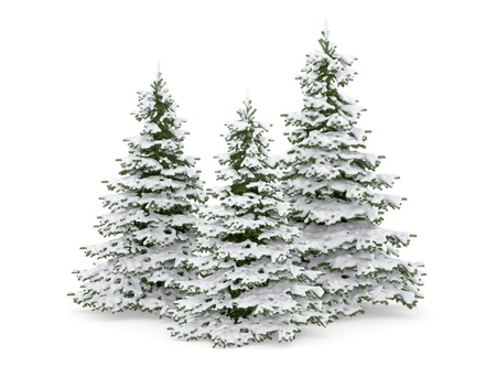 Thre christmas tree and snow  Stock Photo - 11324640