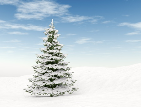frozen trees: Christmas tree and blue sky