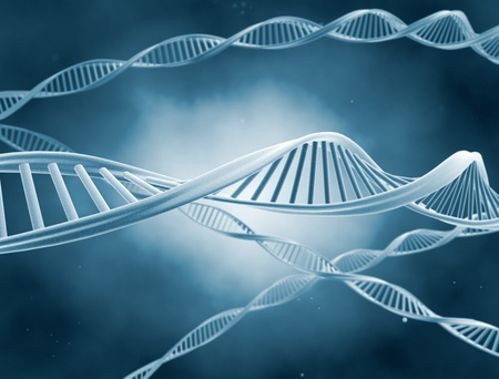 researchs: DNA