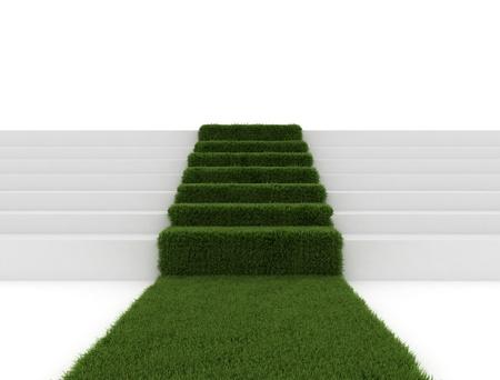 green environment: Green path - environmental concept